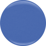 #550 - Blue Bikini