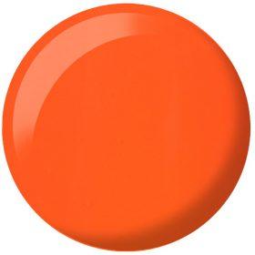 Orange Sherbet #713
